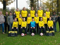 BVV Borne Dames 1